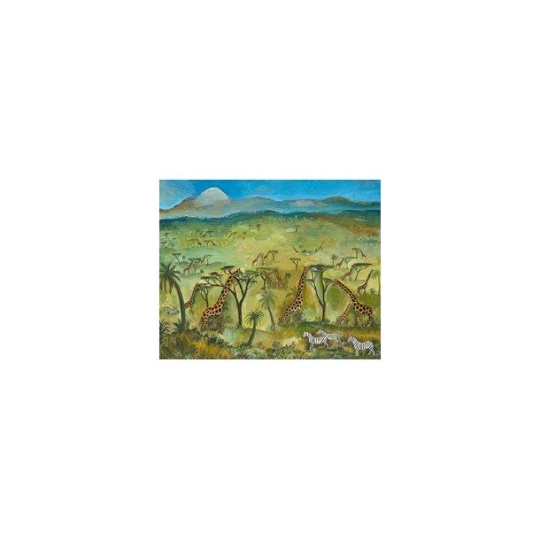 Scherfig plakat 60x80cm